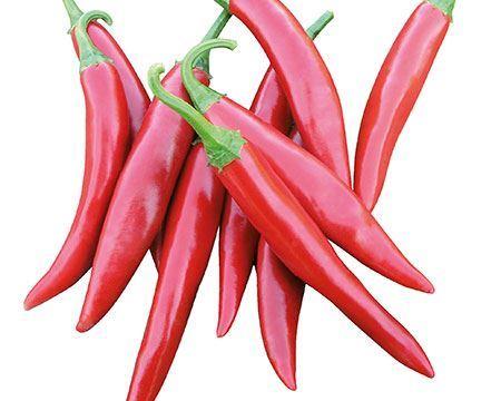 Bild för kategori Chili