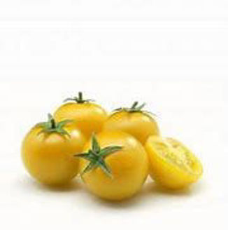 Picture of Tomat Gourmandise yellow